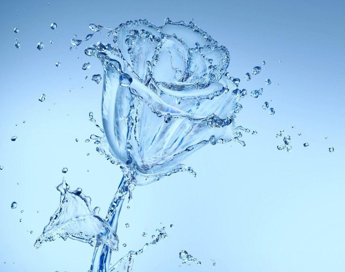 Amore nei segni d'acqua. L'Amore per l'amore. Metamorfosi per Granchio Scorpione Pesci