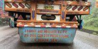 Perù 7. Delfini e mosche